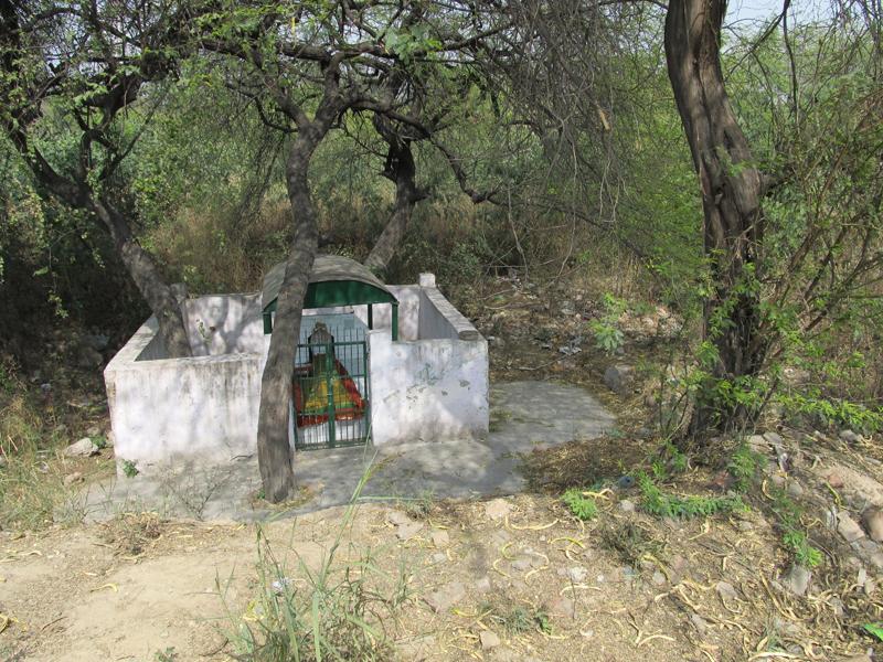 Aneesha Dharwadker Image 16